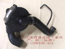 Air cleaner assy(taixing eur iii) Great Wall Pegasus