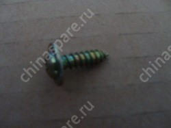 Washer and flange screw comp. BYD F3R