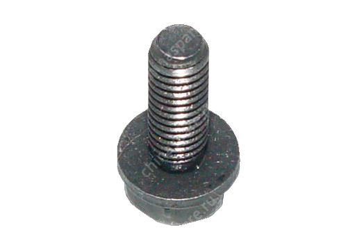 A15BJ06102001 Screw head with gasket Chery Amulet