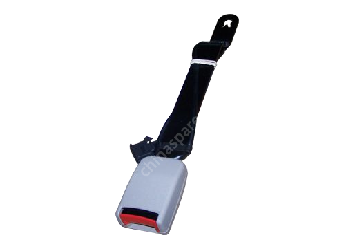 Snapclose Chery Amulet